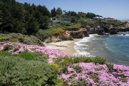 View - Seacliff, Carmel Highlands